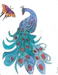 peacock with mariposa